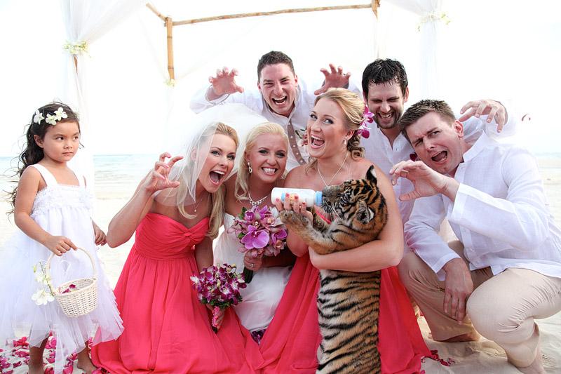 Year of the Tiger wedding Samui